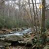 Fighting Creek Trail
