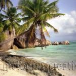 """""""LIFE'S A BEACH"""" Seychelles"""